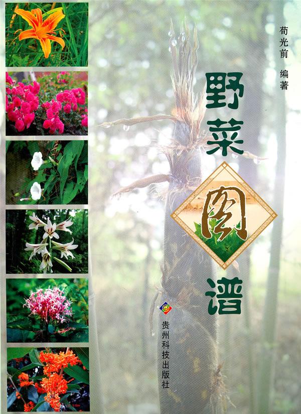 中国的野菜——319种中国野菜图鉴