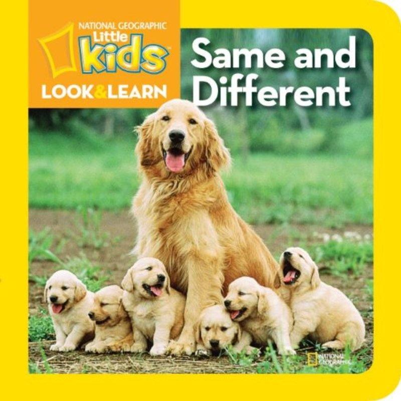 英语课动物板书设计