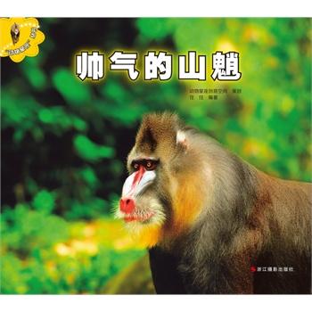 用真实的图片讲述可爱动物们的故事!