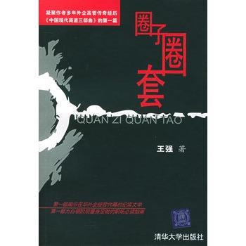 《圈子圈套》王强三部曲完整版TXT下载