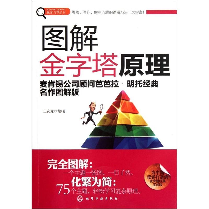 《图解金字塔原理 王友龙》