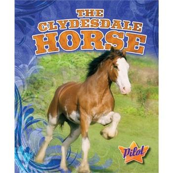 horse (pilot