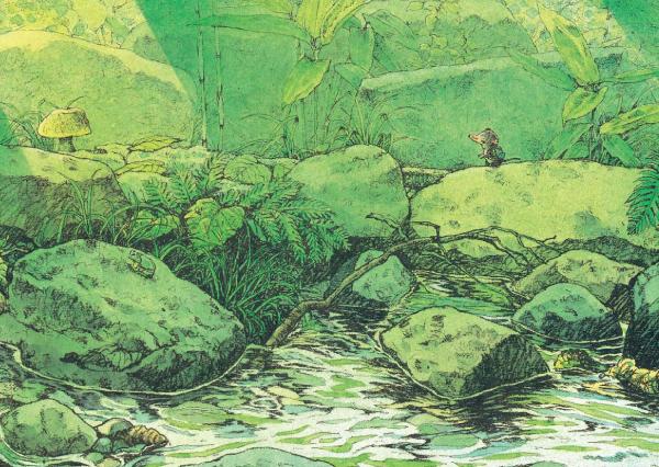 唯美森林插画手绘石块