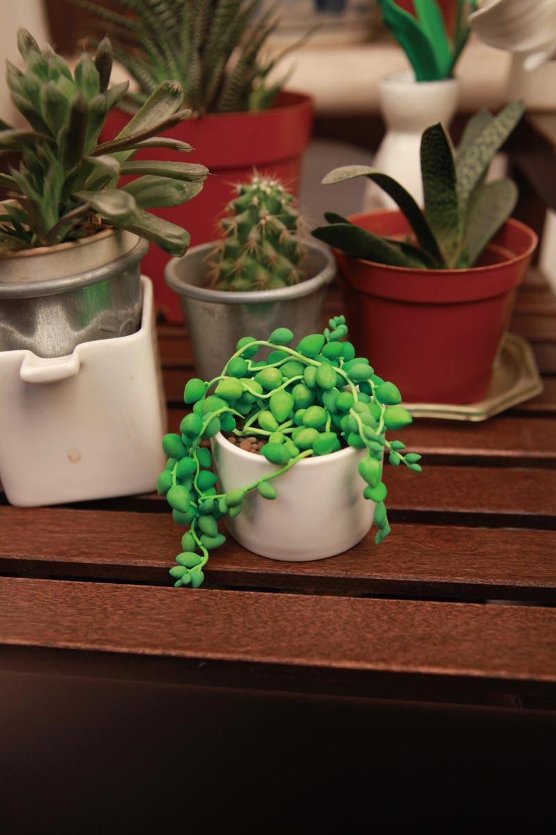 粘土做的可爱小盆栽