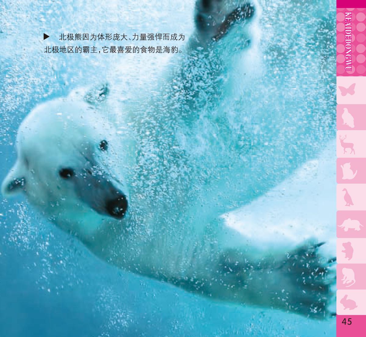 天天小问号:可爱的动物--时代图书网-timesbook:北美