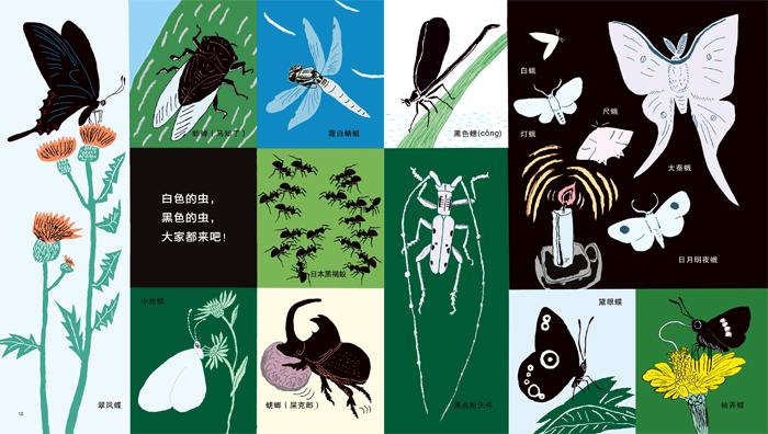 麦田精选图画书 黑白动物大集合