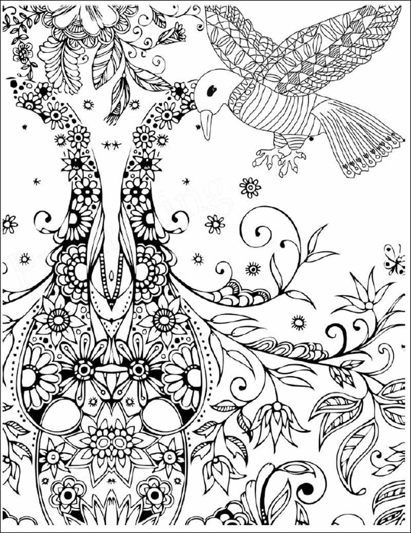 推荐一:畅销欧美,风靡全球,可以帮助读者舒缓压力、放松身心。 推荐二:全书图案精致巧妙,风格唯美清新,飞鸟和花草场景自然、质朴,且灵动富有生气。 推荐三:适宜各个年龄段读者,涂色无限制、自由轻松,可以帮助读者,发现生活之美、创造艺术之美。并在绘画的过程中潜移默化地提高自身的艺术欣赏和创作能力。 HI,你好,欢迎来到秘密花园涂绘学院。 各位即将要开始涂色探险的魔法师们请注意以下几点: 1、握笔时不要太用力、保持放松,不要久握。 2、握笔的位置要适中,不要太靠前也不宜太靠后。 3、保持正确的绘画姿势,减少肩颈