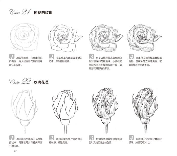 黑白花之绘    case93
