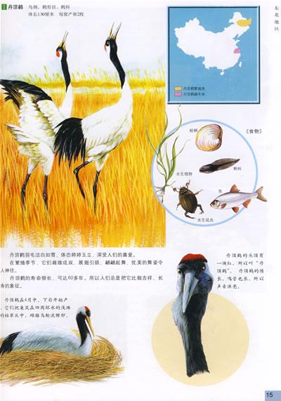 【rt4】中国保护动物图鉴 李湘涛,徐丽娟 中国地图出版社