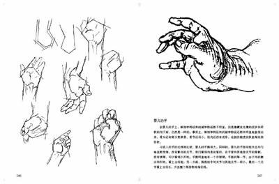 伯里曼人体结构全书_绘画