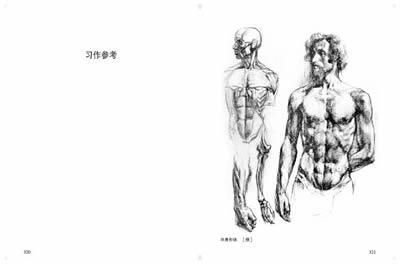 伯里曼人体结构教学 -(美) 伯里曼. 著 (新博)