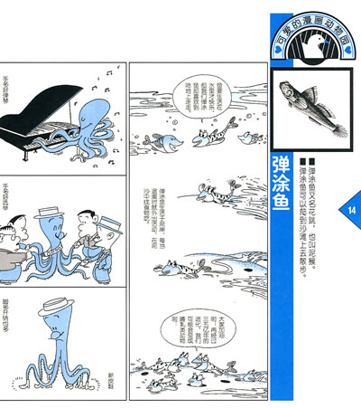 可爱的漫画动物园蓝本(华仑)