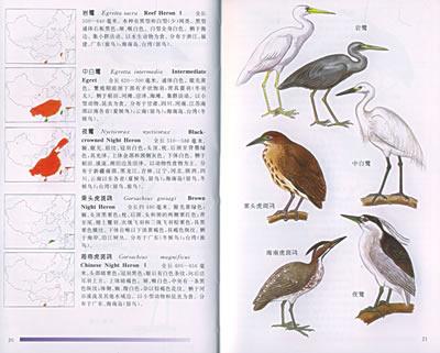 《中国鸟类图鉴(精装)》(中国野生动物保护协会.)