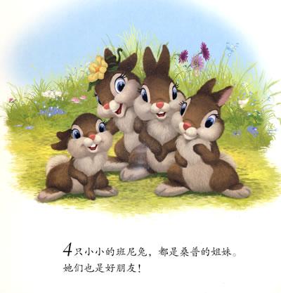 尼兔纸板书 学数数