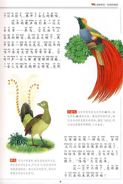 中国儿童立体百科全书热闹的森林/20783356