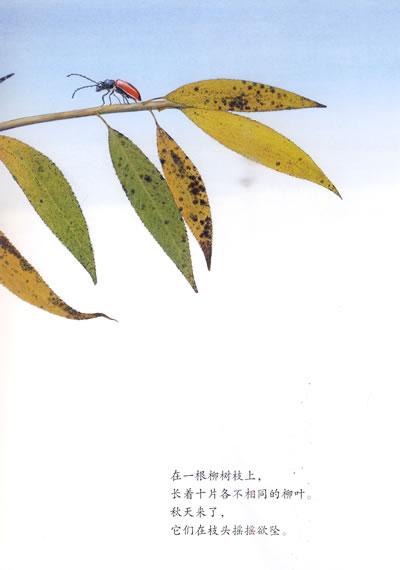 风中的树叶 (平装)